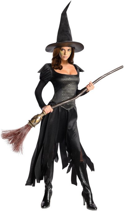 Wizard of Oz Wicked Witch of the West Adult Costume - Large | 887171